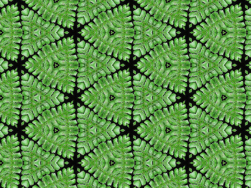 Kaleidoskop 084 herunterladen 1024x768 px oder 1400x1050 px