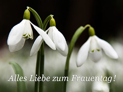 Internationaler Frauentag: 8. März
