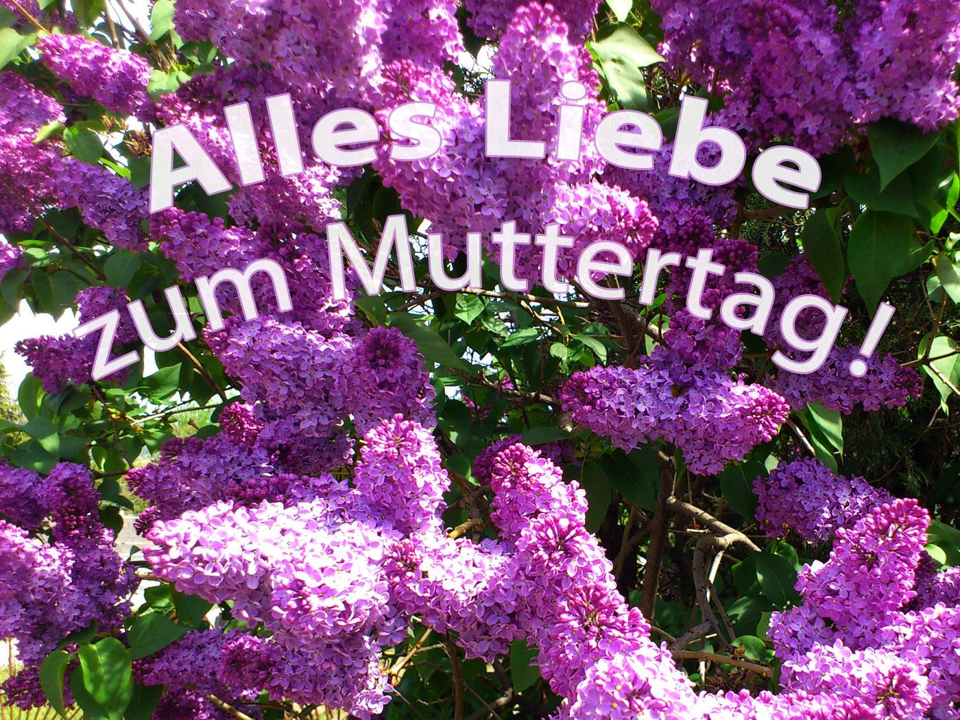 Tolle Malvorlagen Zum Vatertag Gratis Zeitgenössisch - Druckbare ...
