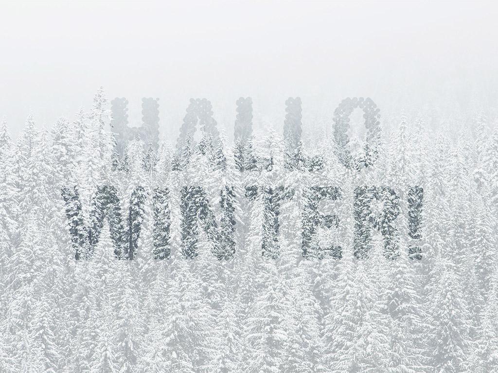 Hallo Winter! - Winter