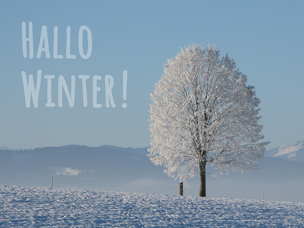 Hallo Winter! - Winter