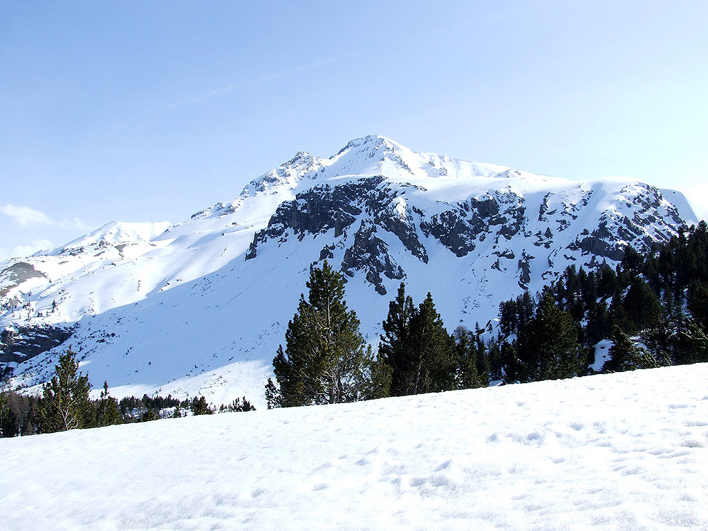 winter 108 hintergrundbild gratis - photo #6