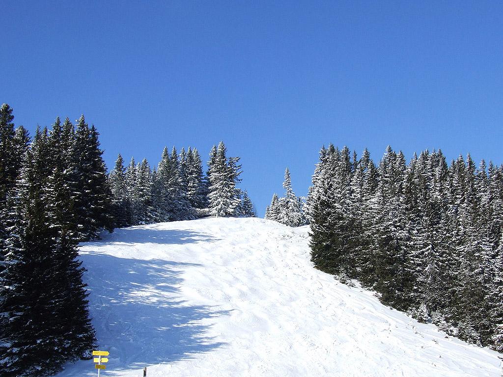winter 108 hintergrundbild gratis - photo #14