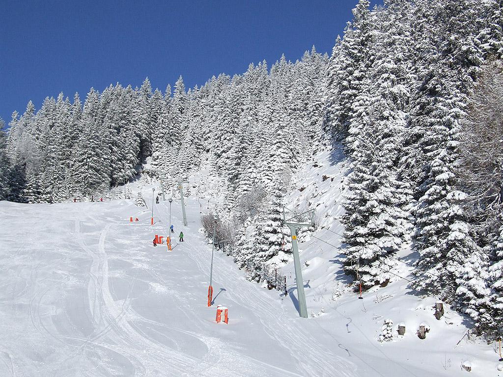 winter 108 hintergrundbild gratis - photo #9