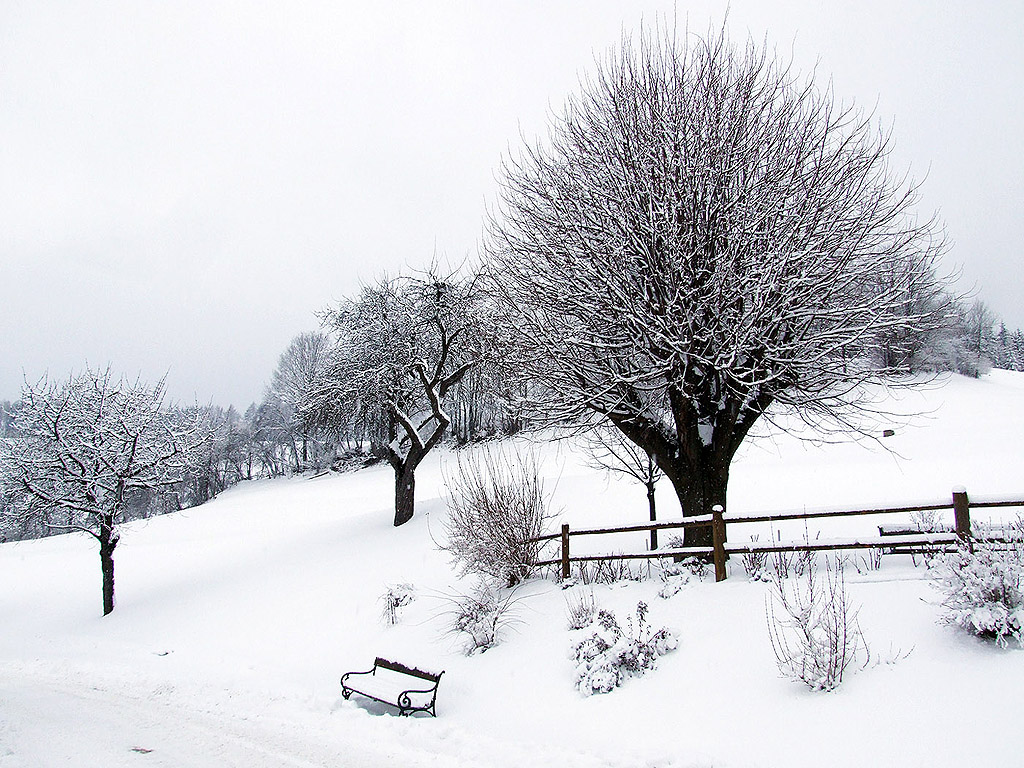 winter 108 hintergrundbild gratis - photo #5