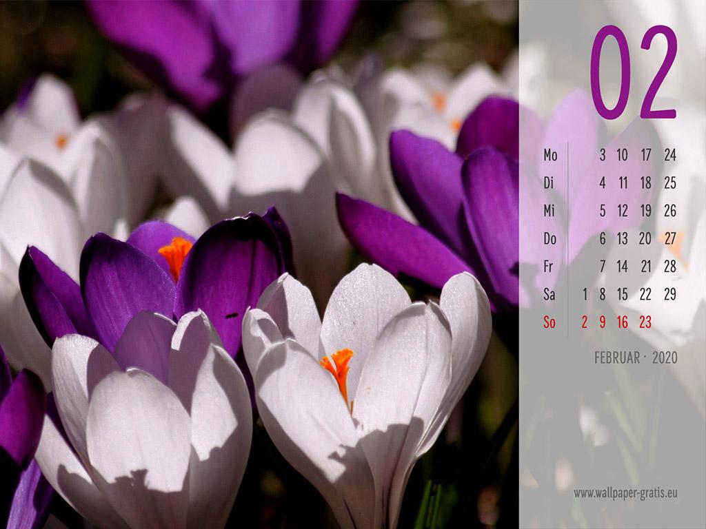 Februar - Kalender 2020 - Blume