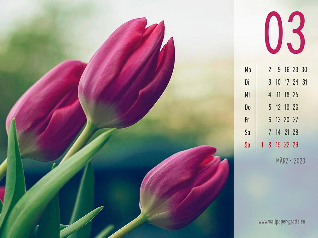 März - Kalender 2020 - Blume