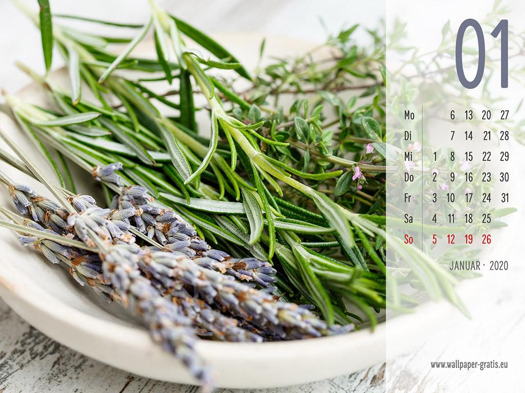 Januar - Kalender 2020 - Lavendel