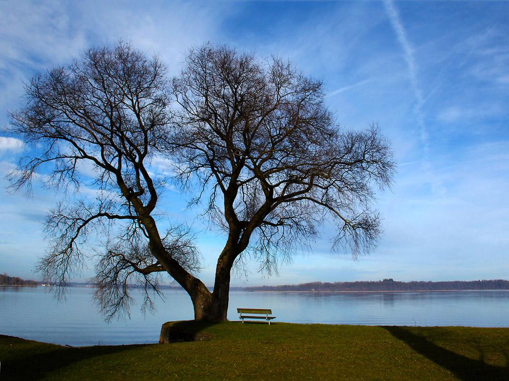 der chiemsee das bayerische meer im januar 2013