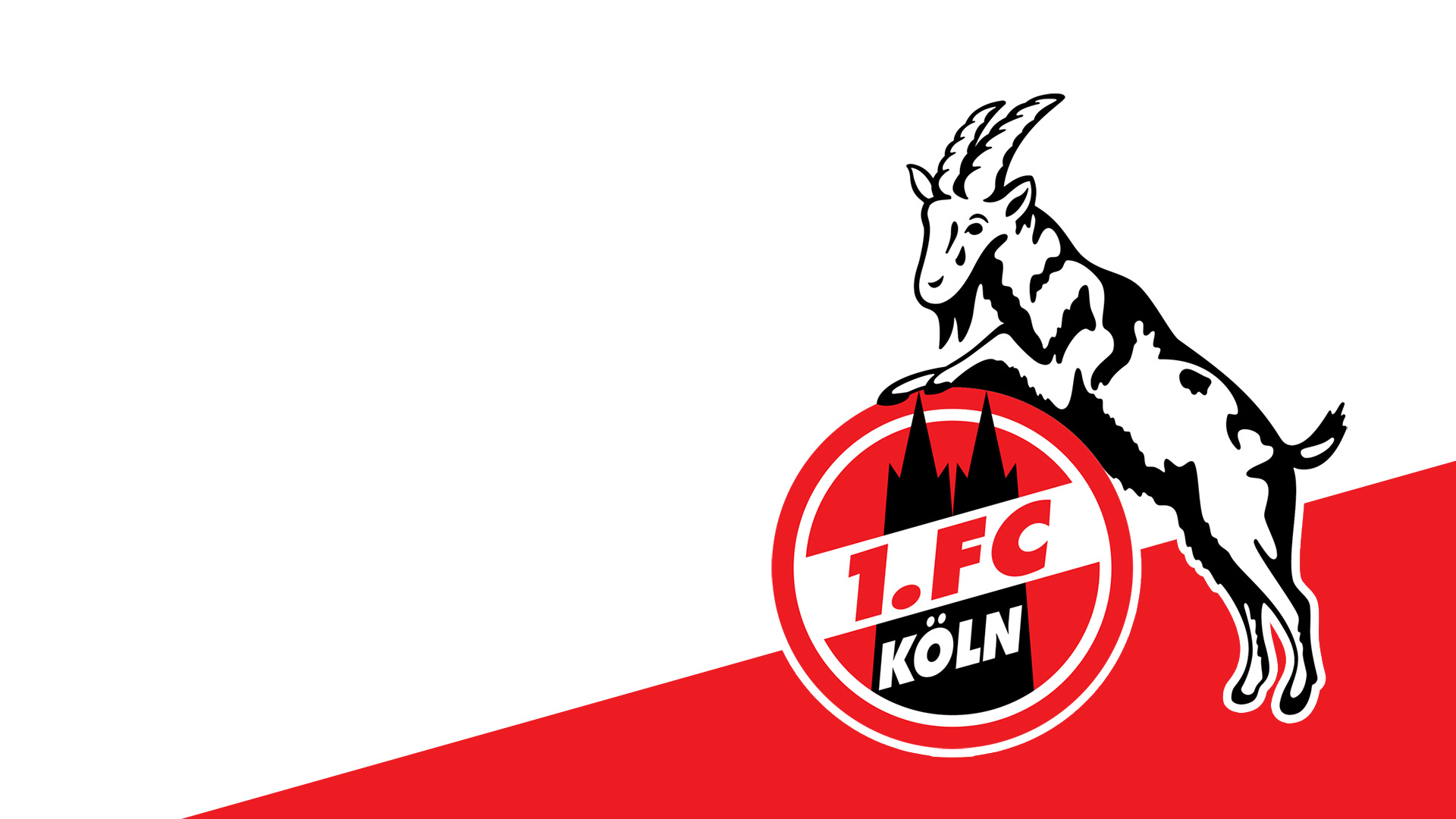 1.fc köln bilder download