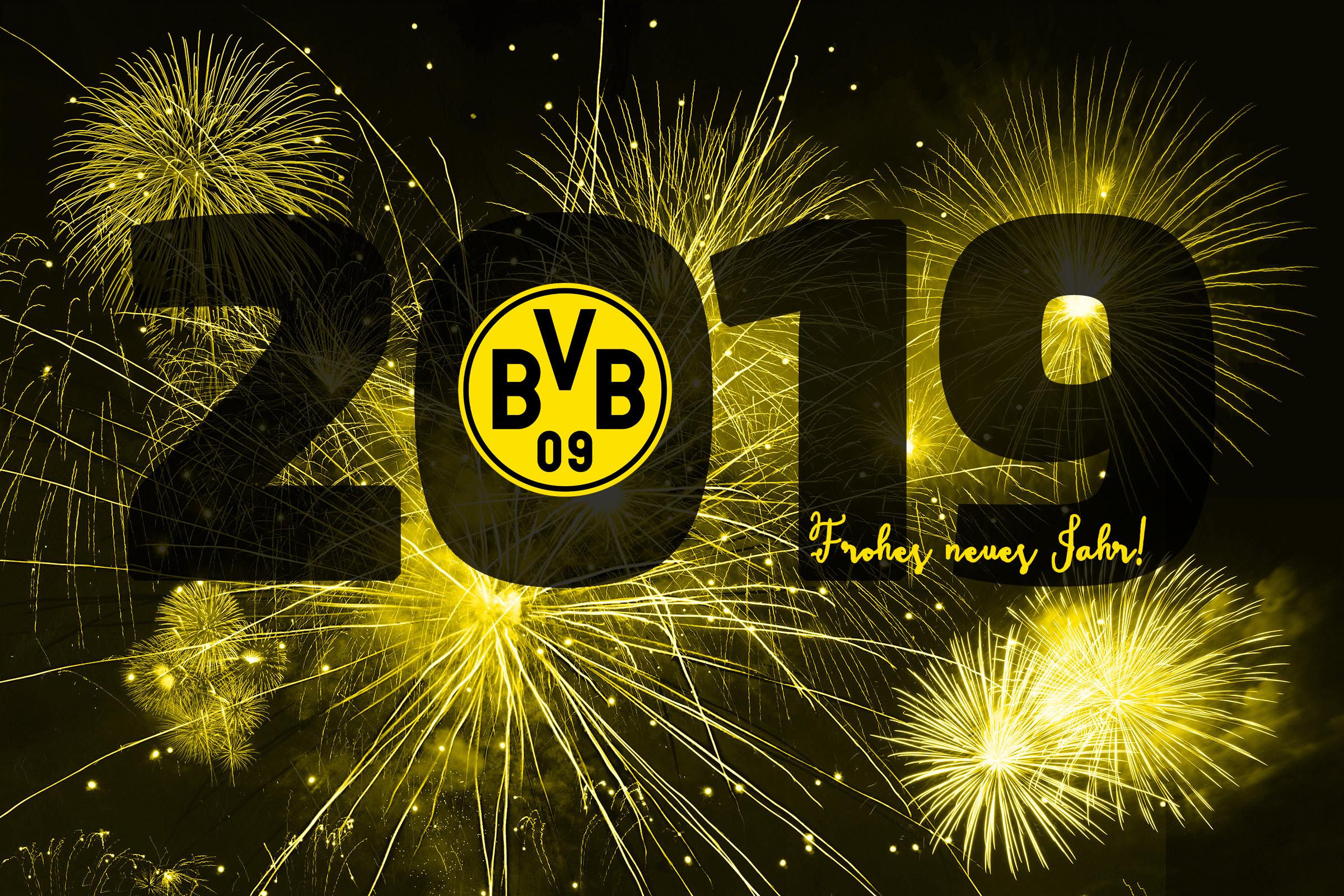 bvb 2019/18