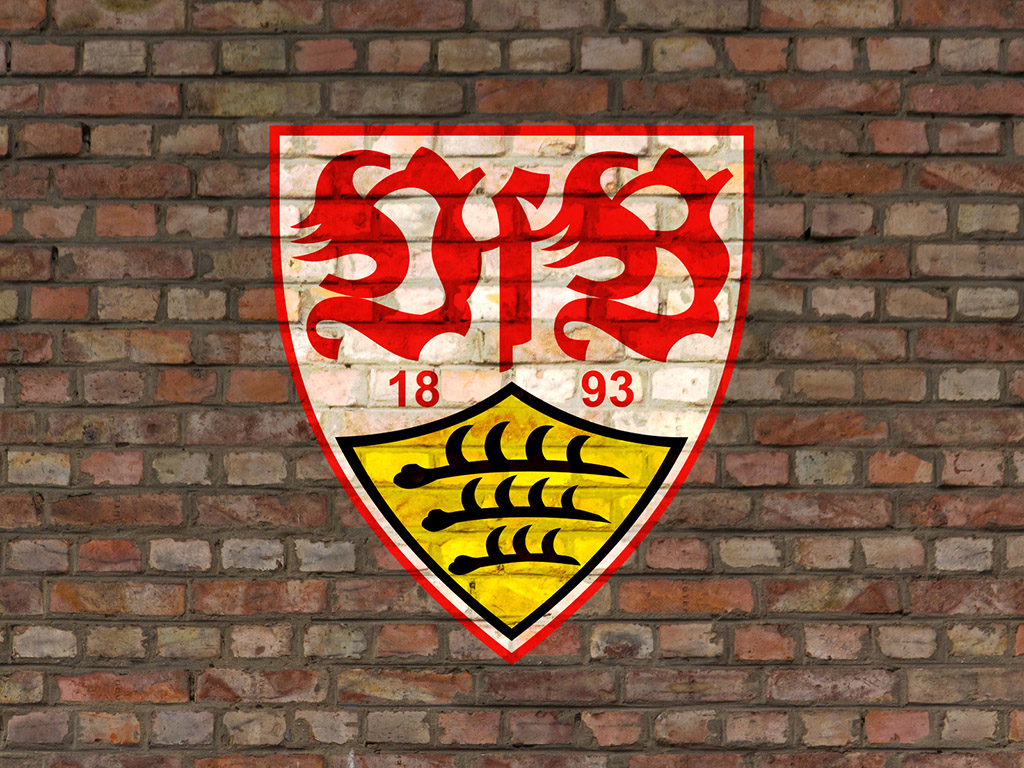 Vfb Stuttgart Probetraining