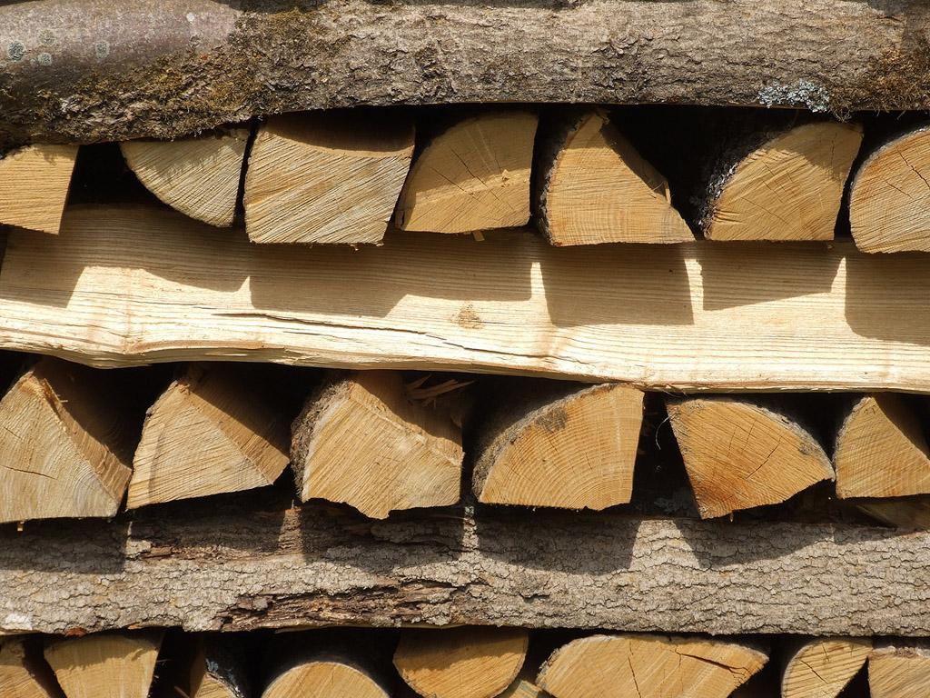 Holz Kostenlos