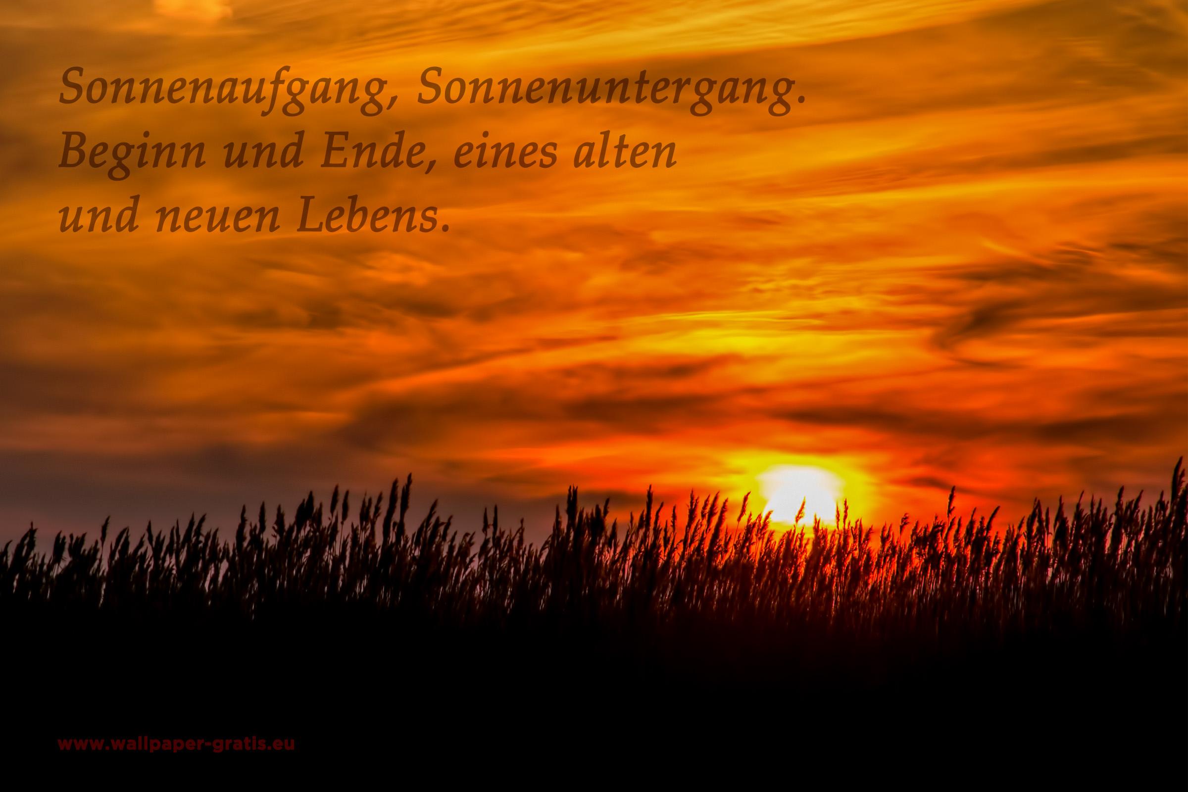 sonnenuntergang sprüche englisch Zitate   Sonnenuntergang   kostenlose Bilder sonnenuntergang sprüche englisch