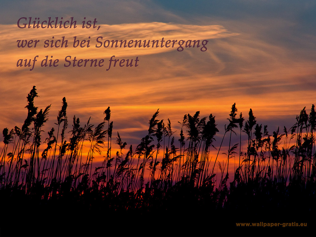 Rilke Zitate Herbst Leben Zitate